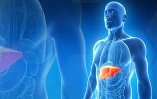 karaciger-transplantasyonu
